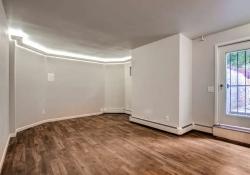 1407 Humboldt Denver CO 80218-small-004-1-Living Room-666x443-72dpi