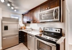 1407 N Humboldt St 5 Denver CO-large-007-1-Kitchen-1500x1000-72dpi