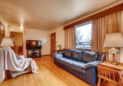 2055-Newland-St-Edgewater-CO-small-007-12-Living-Room-666x444-72dpi