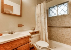 2055-Newland-St-Edgewater-CO-small-016-13-Master-Bathroom-666x444-72dpi