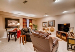 6290 S Iola Ct Englewood CO-small-023-23-Lower Level Family Room-666x445-72dpi
