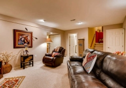 6290 S Iola Ct Englewood CO-small-024-21-Lower Level Family Room-666x445-72dpi
