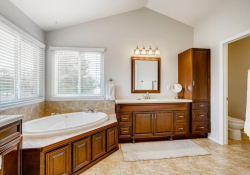 10052-Astoria-Court-Lone-Tree-large-024-033-2nd-Floor-Primary-Bathroom-1500x1000-72dpi