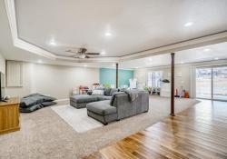 10052-Astoria-Court-Lone-Tree-large-032-037-Lower-Level-Family-Room-1500x999-72dpi