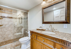 10052-Astoria-Court-Lone-Tree-large-035-031-Lower-Level-Bathroom-1499x1000-72dpi