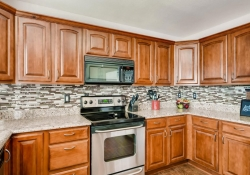 10105_Silver_Maple_Rd-large-006-17-Kitchen-1500x1000-72dpi