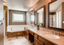 10105_Silver_Maple_Rd-large-016-25-2nd_Floor_Master_Bathroom-1500x1000-72dpi