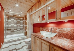 10123-Silver-Maple-Littleton-large-029-018-Lower-Level-Bathroom-1500x1000-72dpi