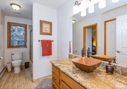 11629_Nichols_Way_Conifer_CO-large-025-15-Bathroom-1499x1000-72dpi