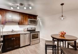 1407 N Humboldt St 5 Denver CO-large-008-8-Kitchen-1500x999-72dpi