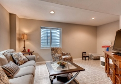 1575 S Goldbug Circle Aurora-print-021-21-Lower Level Recreation Room-2700x1800-300dpi