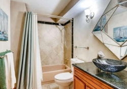 17795_E_Jamison_Ave_Centennial-small-014-24-Bathroom-666x444-72dpi