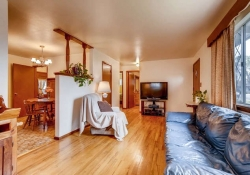 2055-Newland-St-Edgewater-CO-small-008-16-Living-Room-666x444-72dpi