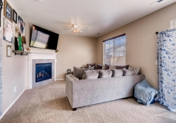 25592 E 2nd Place Aurora CO-large-011-2-Family Room-1500x1000-72dpi