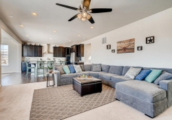 2585-Loon-Cir-Castle-Rock-CO-large-005-003-Living-Room-1500x1000-72dpi