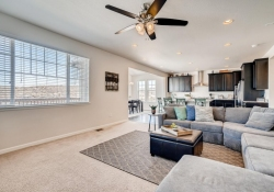 2585-Loon-Cir-Castle-Rock-CO-large-006-004-Living-Room-1500x1000-72dpi