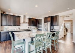 2585-Loon-Cir-Castle-Rock-CO-large-010-017-Kitchen-1500x1000-72dpi