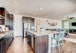 2585-Loon-Cir-Castle-Rock-CO-large-011-012-Kitchen-1500x1000-72dpi