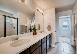 2585-Loon-Cir-Castle-Rock-CO-large-015-015-2nd-Floor-Master-Bathroom-1500x1000-72dpi