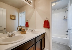 2585-Loon-Cir-Castle-Rock-CO-large-020-011-2nd-Floor-Bathroom-1500x1000-72dpi