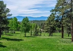 26799_Mirage_Dr_Conifer_CO-small-037-51-Property_View-666x434-72dpi