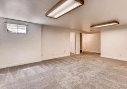 2761_s_fillmore_St_Denver_CO-small-021-21-Lower_Level_Family_Room-666x444-72dpi