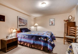 3450 s columbine Circle-small-021-19-Lower Level Bedroom-666x444-72dpi