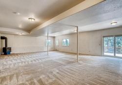 34628-Lyttle-Dowdle-Drive-large-025-026-Lower-Level-Family-Room-1500x1000-72dpi