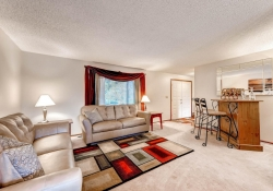 3613 S Andes Ct Aurora CO-large-004-6-Living Room-1499x1000-72dpi
