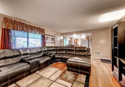 3613 S Andes Ct Aurora CO-large-012-13-Family Room-1500x1000-72dpi