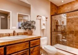 3661-akron-street-denver-co-small-026-lower-level-bathroom-666x444-72dpi