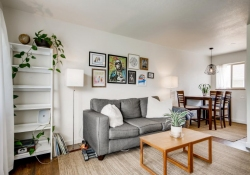 4229-Shoeshone-St-Denver-CO-large-005-001-Living-Room-1500x1000-72dpi