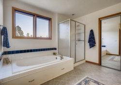 5594-S-Jasper-Way-Centennial-large-018-015-2nd-Floor-Master-Bathroom-1500x1000-72dpi