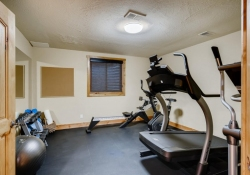 1_5910-S-Ogden-Ct-Centennial-CO-large-034-032-Lower-Level-Exercise-Room-1500x1000-72dpi