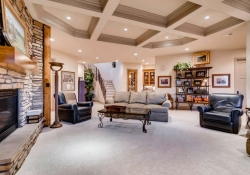 641_Ruby_Trust_Way_Castle_Rock-small-024-45-Lower_Level_Family_Room-666x444-72dpi