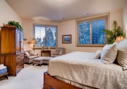 641_Ruby_Trust_Way_Castle_Rock-small-028-66-Lower_Level_Bedroom-666x444-72dpi