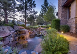 641_Ruby_Trust_Way_Castle_Rock-small-038-36-Water_Feature-666x444-72dpi