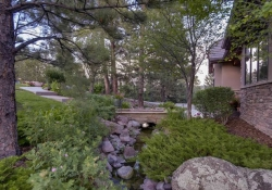 641_Ruby_Trust_Way_Castle_Rock-small-039-39-Side_Yard_toward_Front-666x444-72dpi