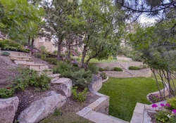 641_Ruby_Trust_Way_Castle_Rock-small-040-43-Back_Yard-666x444-72dpi