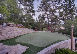641_Ruby_Trust_Way_Castle_Rock-small-041-49-Back_Yard_Putting_Green-666x444-72dpi