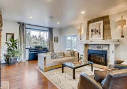 7088-S-Prince-St-Littleton-CO-large-008-005-Living-Room-1500x1000-72dpi