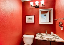 7151 s lewis way Littleton CO-small-013-14-Powder Room-666x444-72dpi