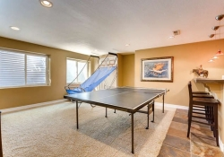 7523 E 6th Place Denver CO-small-031-27-Lower Level Recreation Room-666x444-72dpi