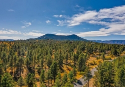 8053-Red-Hill-Rd-Larkspur-CO-large-039-038-Views-1500x1000-72dpi