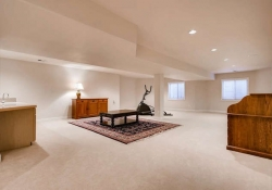 85 Silver Fox Greenwood-small-019-13-Lower Level Family Room-666x444-72dpi
