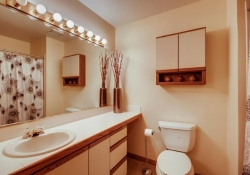 8505-E-Temple-Drive-Unit-506-large-019-011-2nd-Floor-Bathroom-1500x1000-72dpi