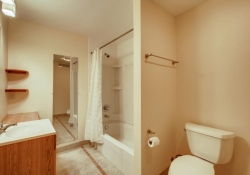 8505-E-Temple-Drive-Unit-506-large-023-019-Lower-Level-Bathroom-1500x1000-72dpi