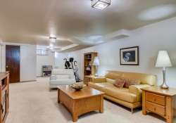 935-S-Fillmore-Way-Denver-CO-large-018-025-Lower-Level-Family-Room-1500x1000-72dpi