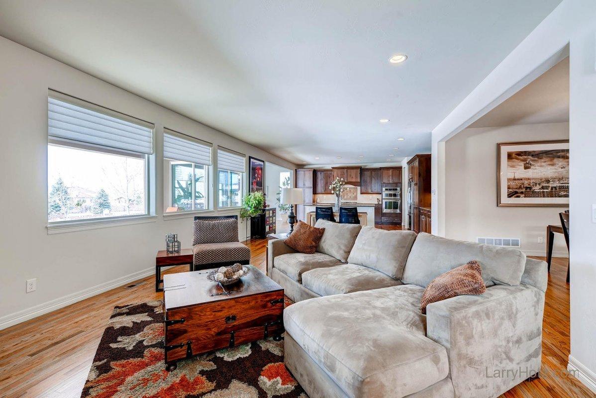 9497-vista-hill-lane-lone-tree-large-005-living-room-1499x1000-72dpi