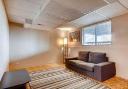 9753-Quay-Loop-Westminster-CO-small-021-17-Lower-Level-Family-Room-666x444-72dpi